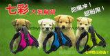 Harness del animal doméstico (YD631)