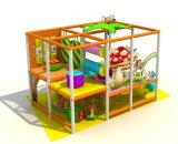 Kind-Park spielt kleines Innenspielplatz-Spielplatz-Gerät
