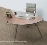 가죽 (V28)를 가진 새로운 유행 사무실 테이블