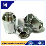 Les produits en métal ont personnalisé la noix de dessin d'étude