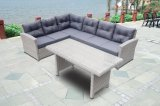 Garden Patio Rattan Wicker Outdoor Furniture Loungest Sofa Table en verre (J725)