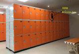 Cabina elegante del armario para la gimnasia