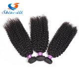 o cabelo Curly malaio 3PCS do Virgin 7A cru livra o cabelo malaio do Virgin do transporte
