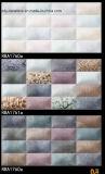 壁のタイルの製陶術のタイル