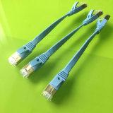 Blauer Kabel-Metallkopf des Netz-Cat7