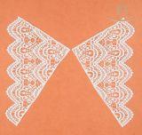 Merletto disponibile dell'unità di elaborazione Colar del reticolo di farfalla di ordine di prova bello