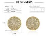 18k bedekt de goud Geplateerde Micro de Vrouwen van de Oorring van de Nagel van CZ