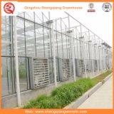 الزراعة متعدد سبان PC ورقة الاحتباس الحراري للخضروات / الزهور