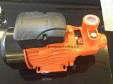 Pompa ad acqua d'ottone interna della ventola di combustione 0.55kw