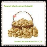 Luteolina natural del polvo del extracto del shell del cacahuete del 100%