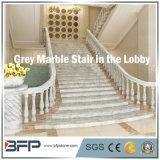 Escadas de pedra de mármore cinzentas/etapa & montante para o assoalho/interior Upstair