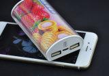 高容量の全能力の二重出力5200mAh吸盤の携帯用充電器