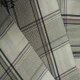Baumwollpopelin-gesponnenes Garn gefärbtes Gewebe 100% für Kleid-Hemd-Kleid Rls32-1po