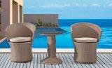 Cadeira do Rattan e mobília ao ar livre do jardim da tabela do Rattan