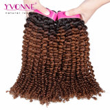 Saleのための普及したKinky CurlブラジルのOmbre Human Hair Extensions