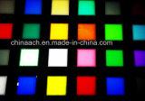Hoja de acrílico colorida del molde/del plexiglás para la luz