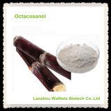 Pureza natural Octacosanol de la alta calidad el 98%
