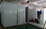 Alloggiamenti climatici professionali della stanza Walk-in della prova di stabilità di umidità e di temperatura