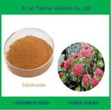 工場供給の自然なSalidrosideの粉