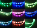 Compatibilidade electrónica LVD RoHS do CE dois anos de garantia, luz da corda do diodo emissor de luz do RGB