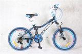 """20 """" جبل درّاجة مع [شيمنو] [21سب] [متب] درّاجة"""