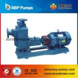 하수 오물 원심 펌프 또는 화학제품 펌프