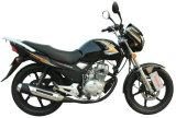 125cc/150cc Racing Bike Street Bike Motorbike