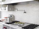 Edelstahl-Potenziometer-Einfüllstutzen-Küche-kaltes Wasser-an der Wand befestigter Hahn