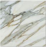 Copiar el azulejo de piso esmaltado mármol del chorro de tinta