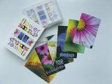 Tarjeta de juego al por mayor de los niños, tarjeta inteligente del juego de mesa