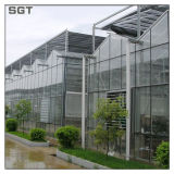 Agricultureのための4mm-19mm Low Iron Greenhouse Glass