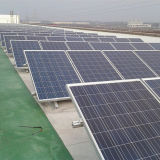 보장된 질 태양 광전지 Stents