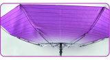 Stripe& changeant graduellement les parapluies d'Open&Close (YS-3FD22083968R)