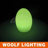 Wfe-E100 계란 모양 LED 작은 밤 빛