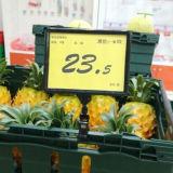 Lojas Plastic Label Holder da fruta para Shelves
