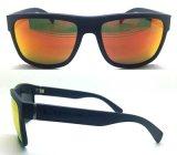 2016 جديدة نمو بلاستيكيّة مصمّم نظّارات شمس مع عالة علامة تجاريّة