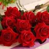 Цветок Rose украшения типа горячего сбывания уникально