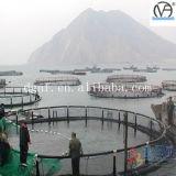 Acuacultura del precio competitivo que cultiva jaulas de los pescados