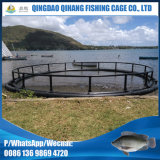 Projeta a flutuação em volta da gaiola para a piscicultura