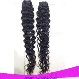Onde brésilienne de Jackson de cheveux humains de Remy de Vierge de la meilleure qualité de qualité