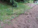 Rete metallica esagonale galvanizzata pesante/rete metallica del pollo