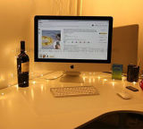 Lumière féerique 33 pi 100 DEL de chaîne de caractères d'USB