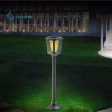 Lampe économiseuse d'énergie, lumière extérieure solaire de DEL, jardin solaire de lampe
