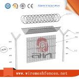 3D에 의하여 직류 전기를 통하는 PVC에 의하여 입히는 용접된 철망사 담을 검술하는 곡선