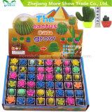 Novidade Água Grow Up Plants Mini Cactus Flower Growing Pet Plants Toys