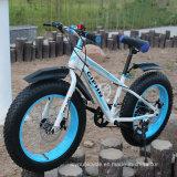 4.0 populares Bicicleta Bicicleta Fat bicicleta de montaña de nieve (LY-a-6)