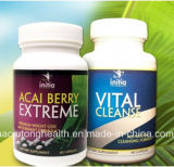 건강 제품 Acai 자연적인 장과 극단적인 빠른 체중 감소 캡슐