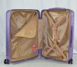 El equipaje de la manera fijó con 5 diversas tallas para la opción