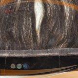 Menschenhaar kein Klipp-Perücke-Stirnbein, Menschenhaar-Spitze-Griff