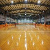 FertiginnenBasketballplatz-Stahlgebäude mit niedrigen Kosten